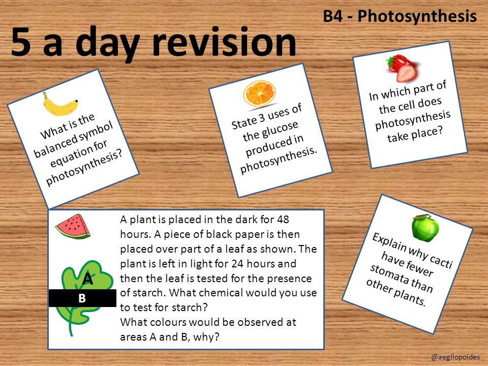 5 a day revision B4 - Photosynthesis A B