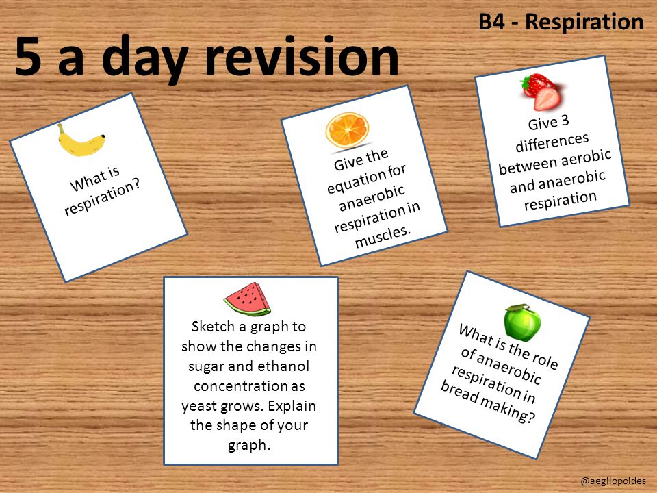 5 a day revision B4 - Respiration