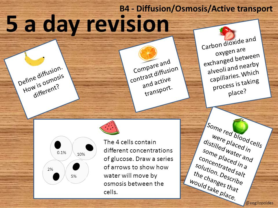5 a day revision B4 - Diffusion/Osmosis/Active transport