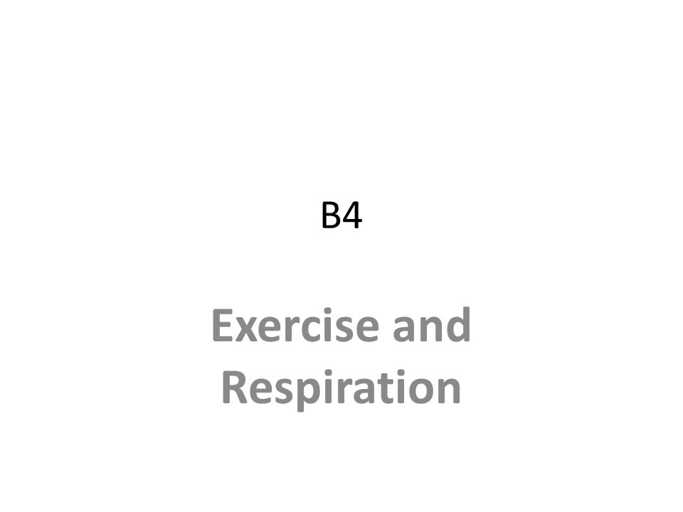Exercise and Respiration