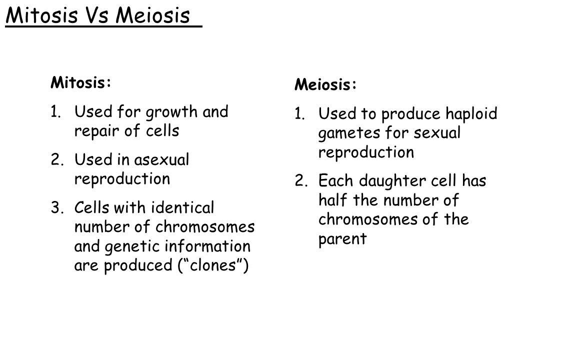 Mitosis Vs Meiosis Mitosis: Meiosis:
