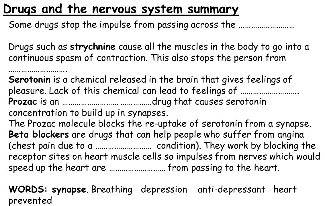 Drugs and the nervous system summary