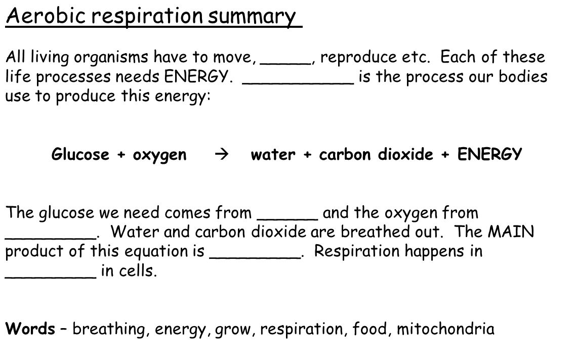 Glucose + oxygen  water + carbon dioxide + ENERGY