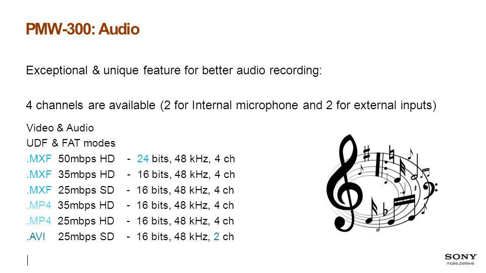 PMW-300: Audio