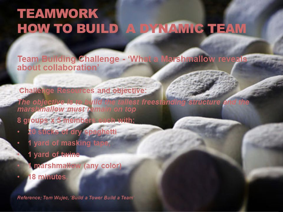TEAMWORK how to Build a dynamic team