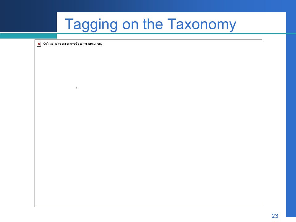 Tagging on the Taxonomy
