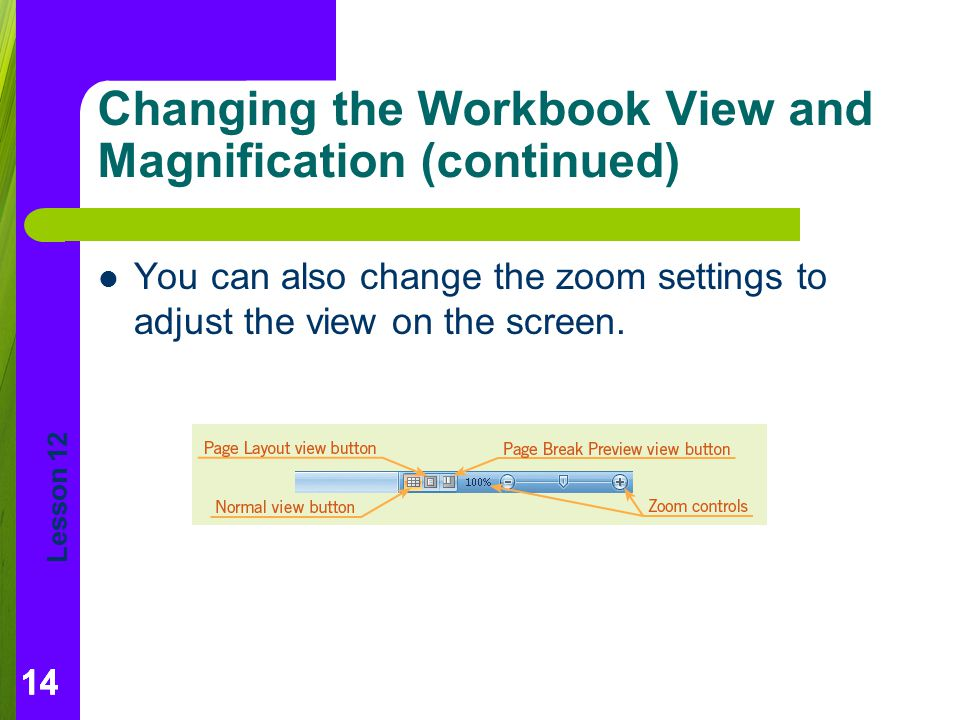 Changing the Workbook View and Magnification (continued)