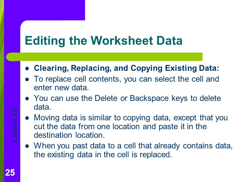 Editing the Worksheet Data