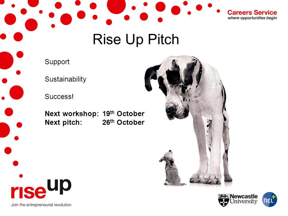 Rise Up Pitch Support Sustainability Success!