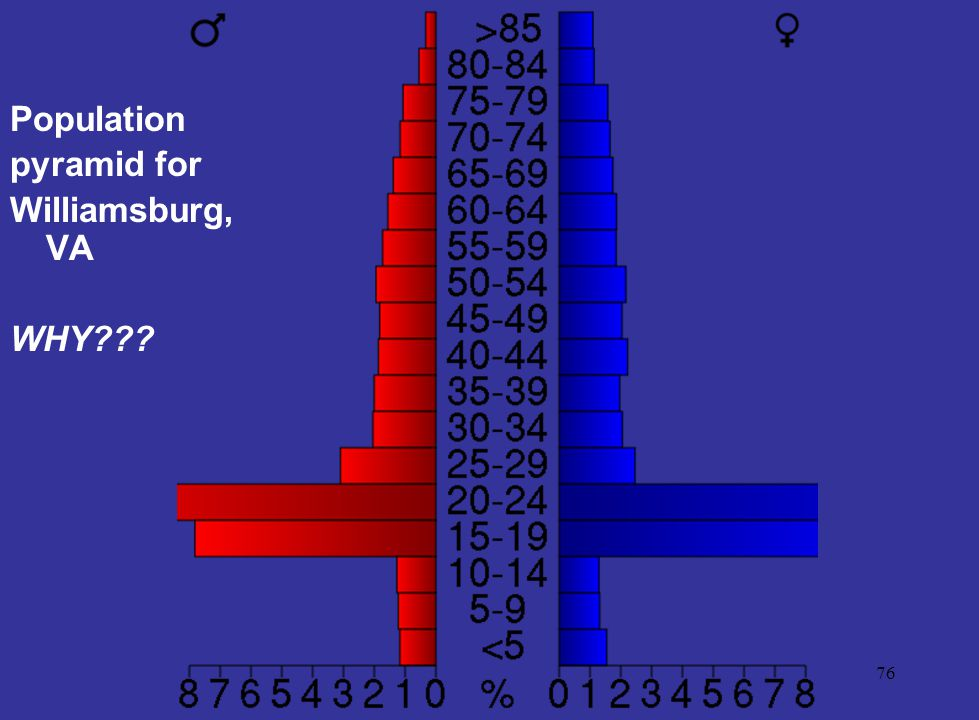 Population pyramid for Williamsburg, VA WHY