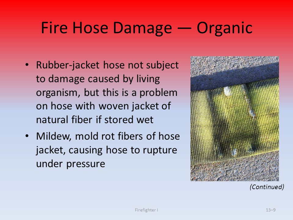 Fire Hose Damage — Organic