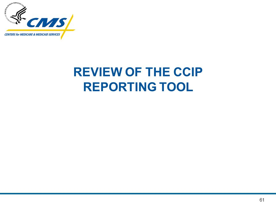 REVIEW OF THE CCIP REPORTING TOOL