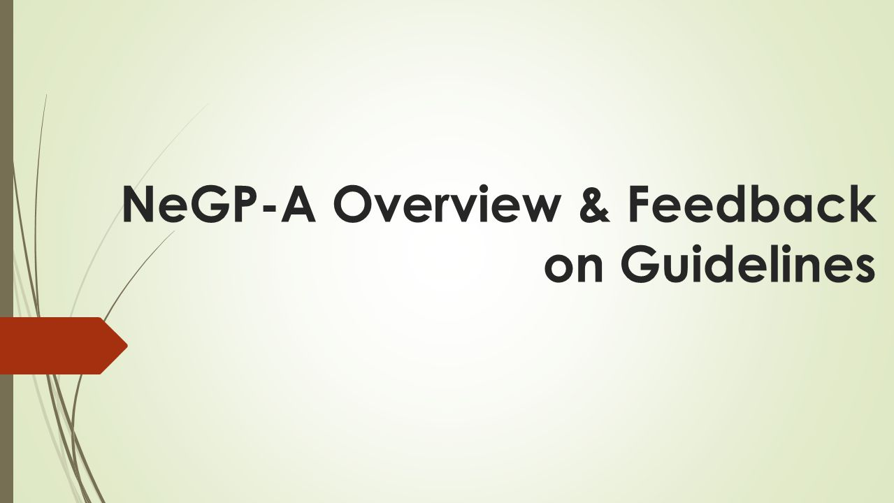 NeGP-A Overview & Feedback on Guidelines