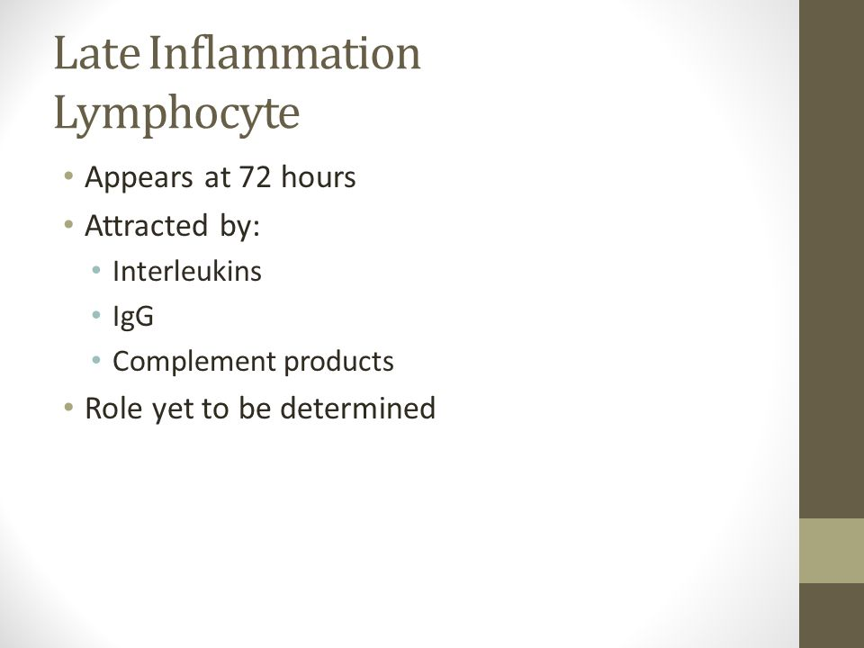 Late Inflammation Lymphocyte