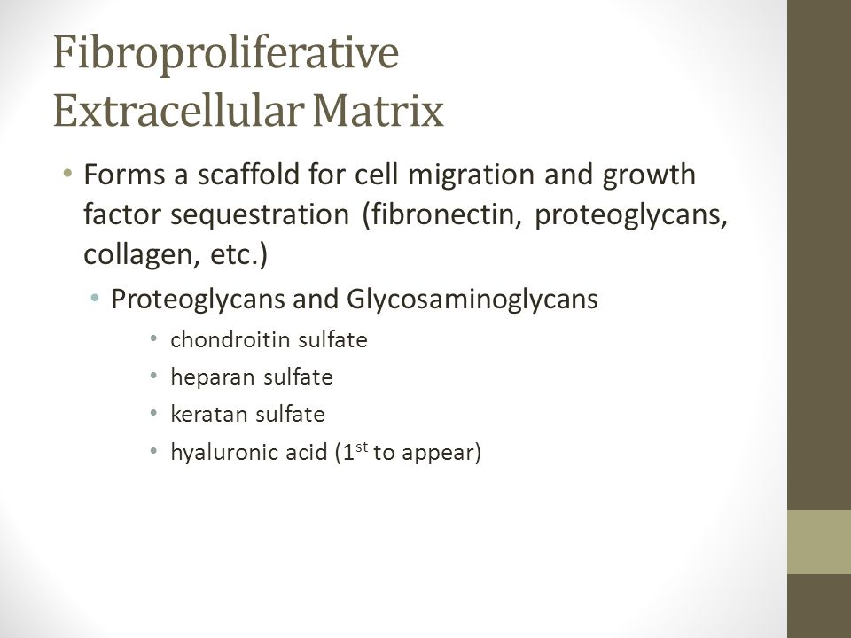 Fibroproliferative Extracellular Matrix