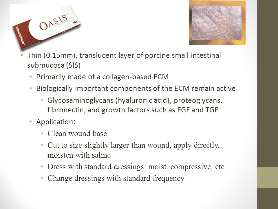 Oasis Thin (0.15mm), translucent layer of porcine small intestinal submucosa (SIS) Primarily made of a collagen-based ECM.