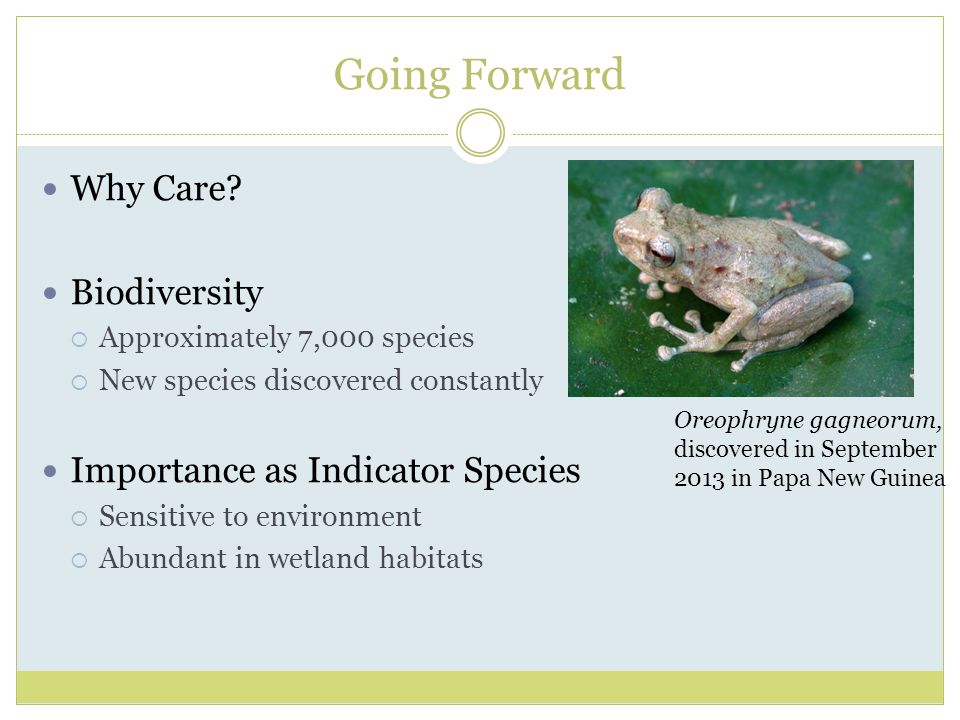 Going Forward Why Care Biodiversity Importance as Indicator Species