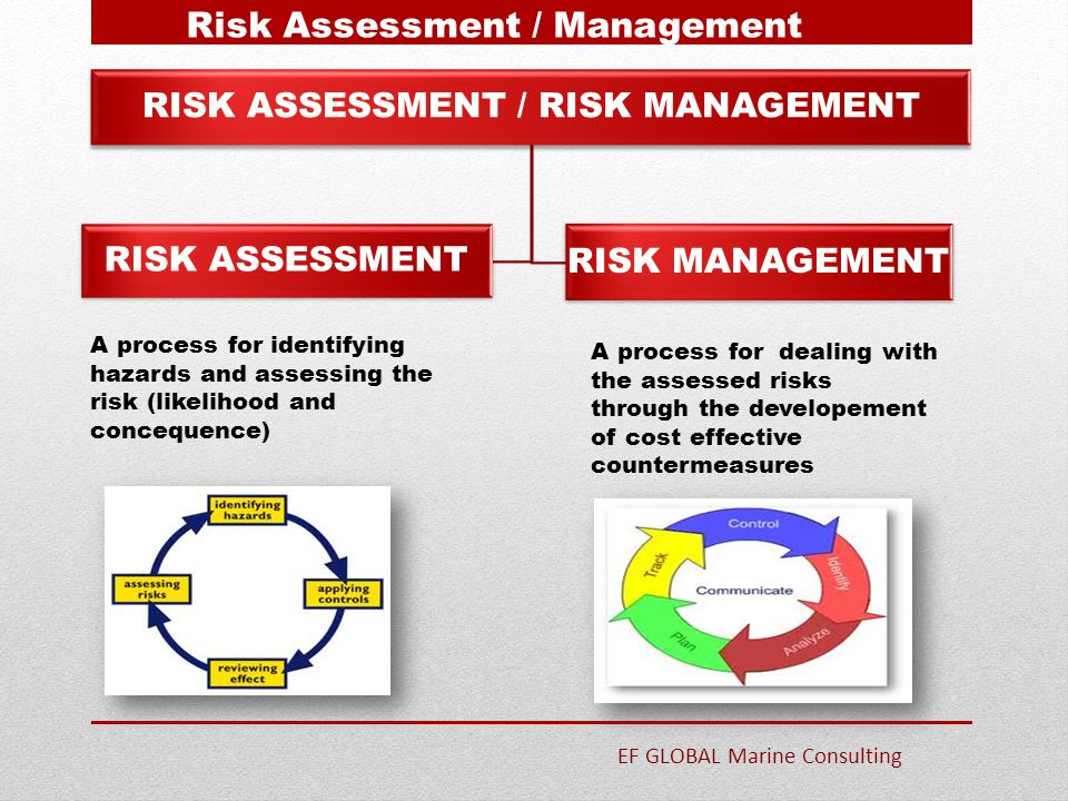 RISK ASSESSMENT / RISK MANAGEMENT