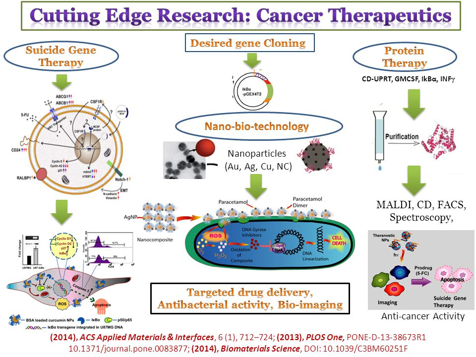 Cutting Edge Research: Cancer Therapeutics