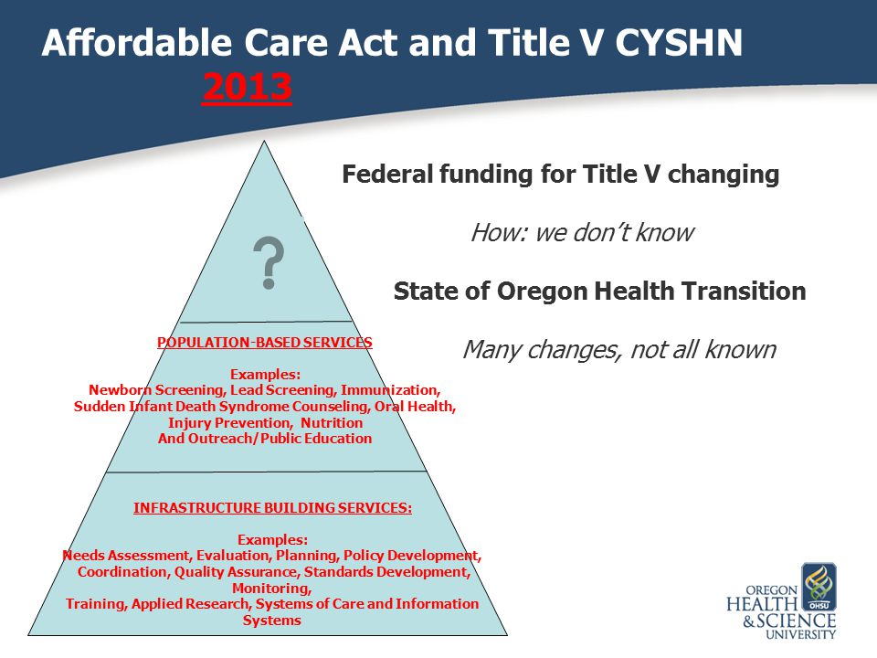 Affordable Care Act and Title V CYSHN 2013