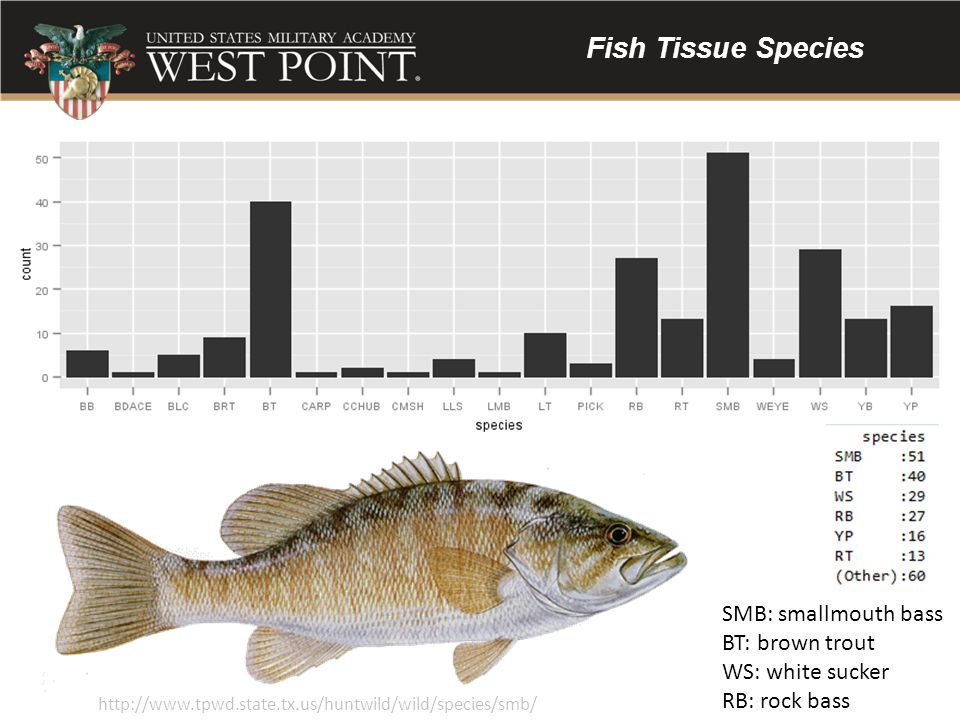 Fish Tissue Species SMB: smallmouth bass BT: brown trout
