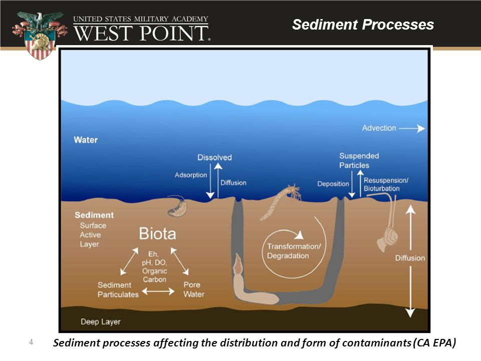 Sediment Processes Figure 2.2. Sediment processes affecting the distribution and form of. contaminants. CA EPA, July 18, 2008.