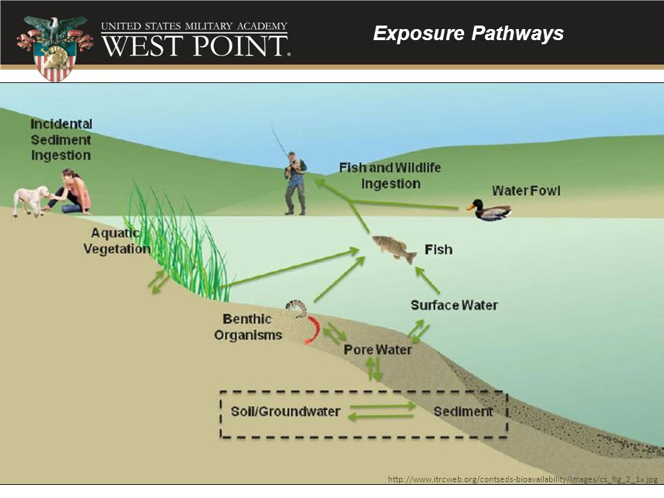 Exposure Pathways http://www.itrcweb.org/contseds-bioavailability/images/cs_fig_2_1x.jpg, accessed 28 Aug 13.