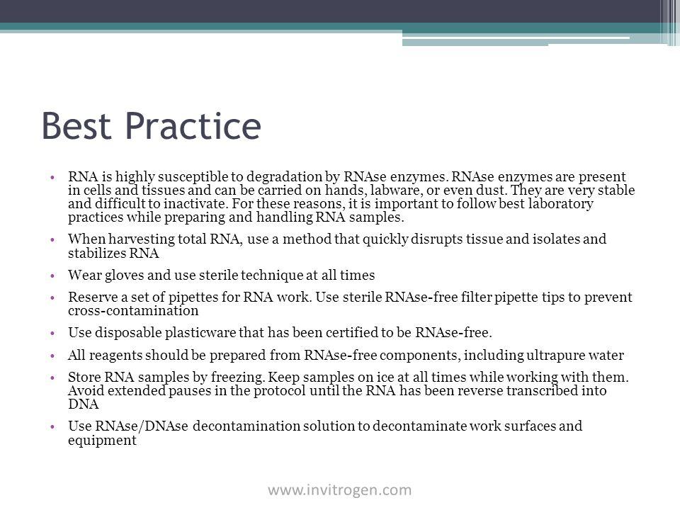 Best Practice www.invitrogen.com