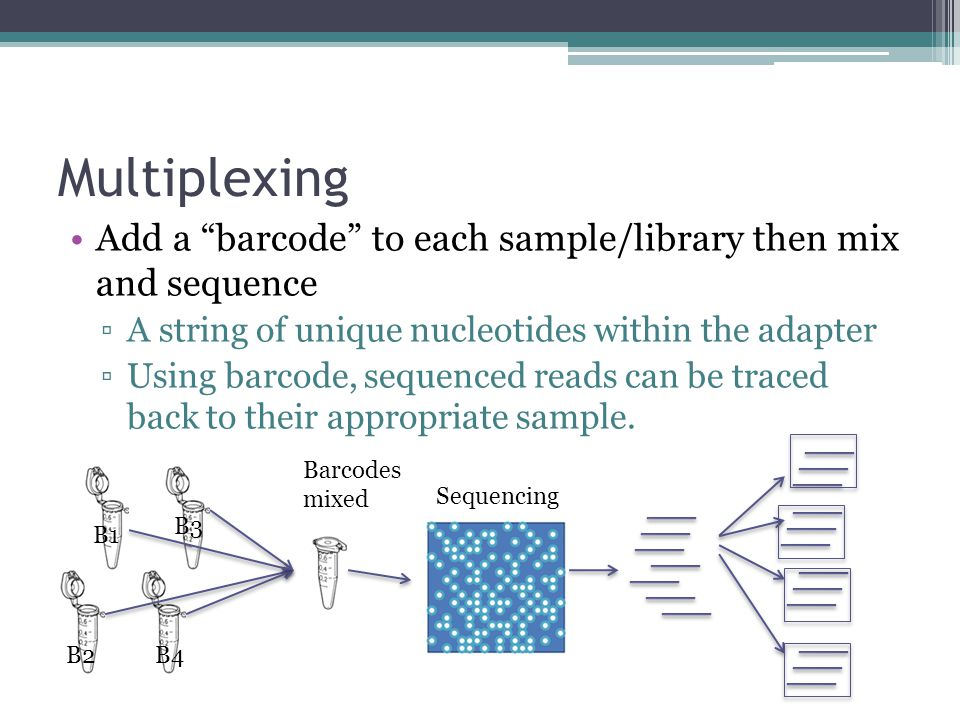 Multiplexing Add a barcode to each sample/library then mix and sequence. A string of unique nucleotides within the adapter.