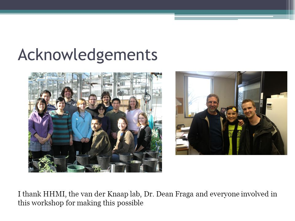 Acknowledgements I thank HHMI, the van der Knaap lab, Dr.