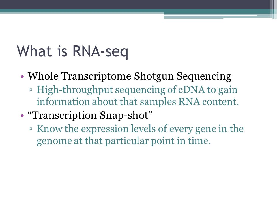 What is RNA-seq Whole Transcriptome Shotgun Sequencing