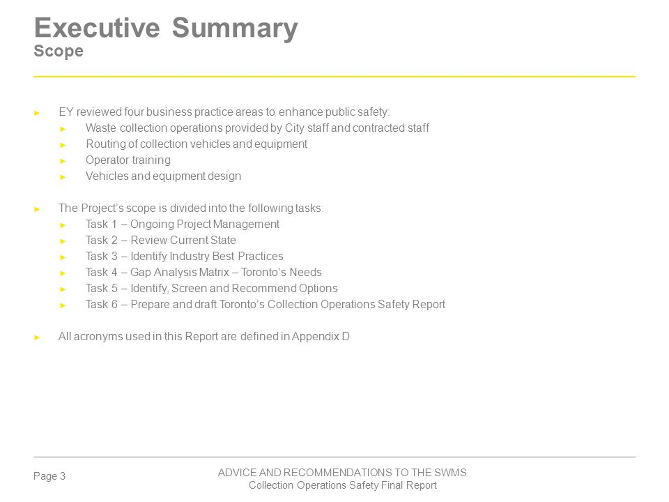 Executive Summary Scope