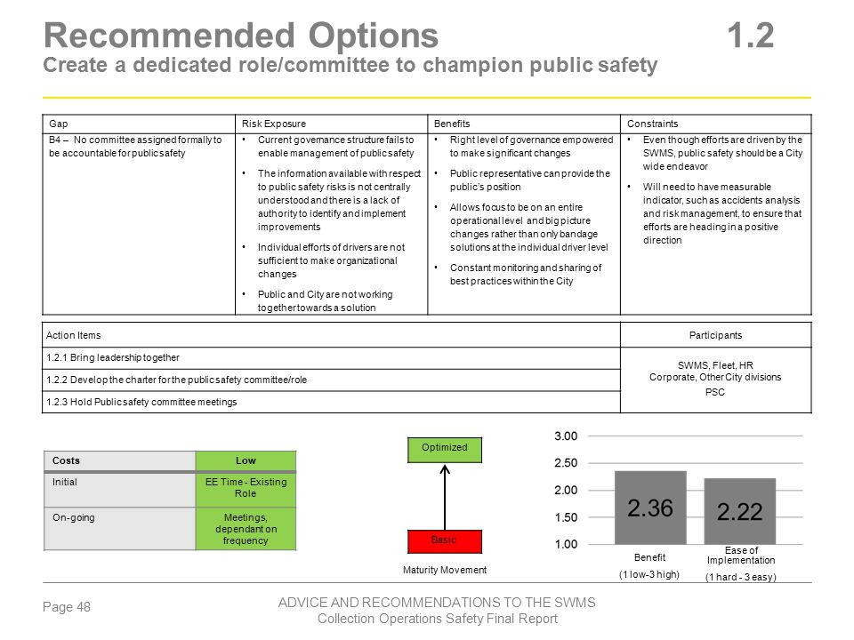 Recommended Options 1.2 Create a dedicated role/committee to champion public safety
