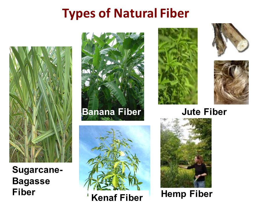 Types of Natural Fiber Banana Fiber Jute Fiber