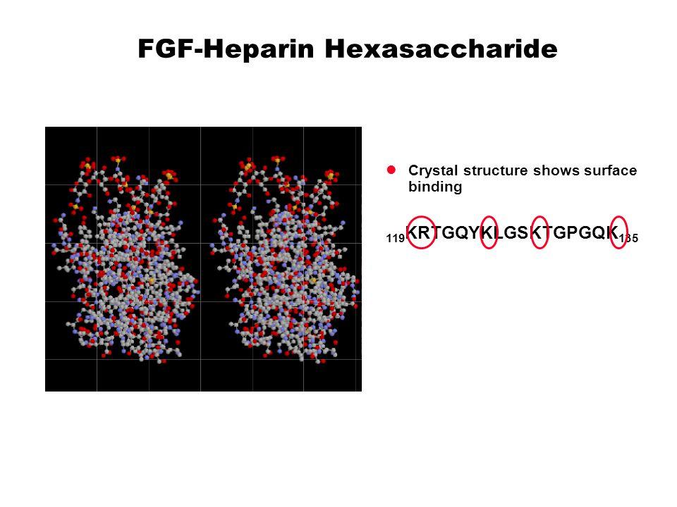 FGF-Heparin Hexasaccharide