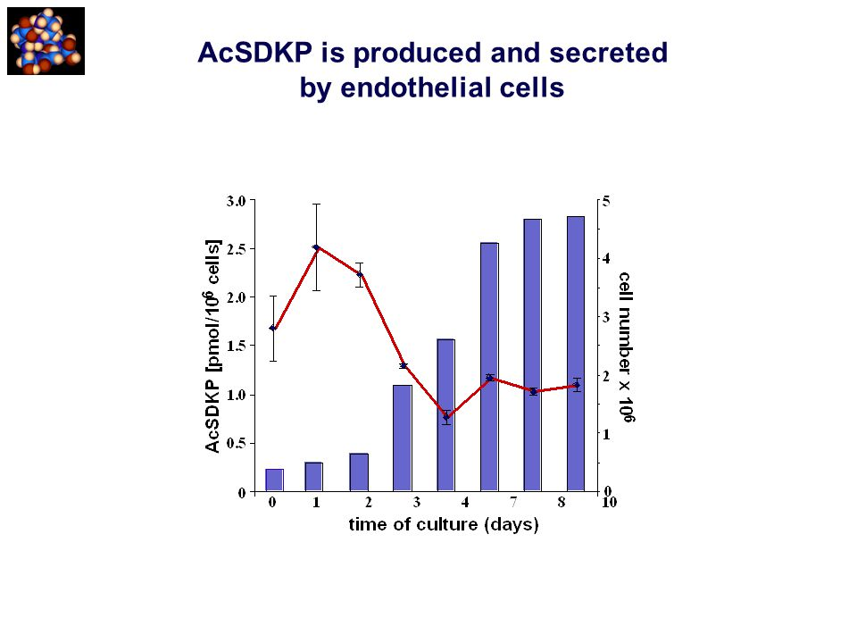 AcSDKP is produced and secreted