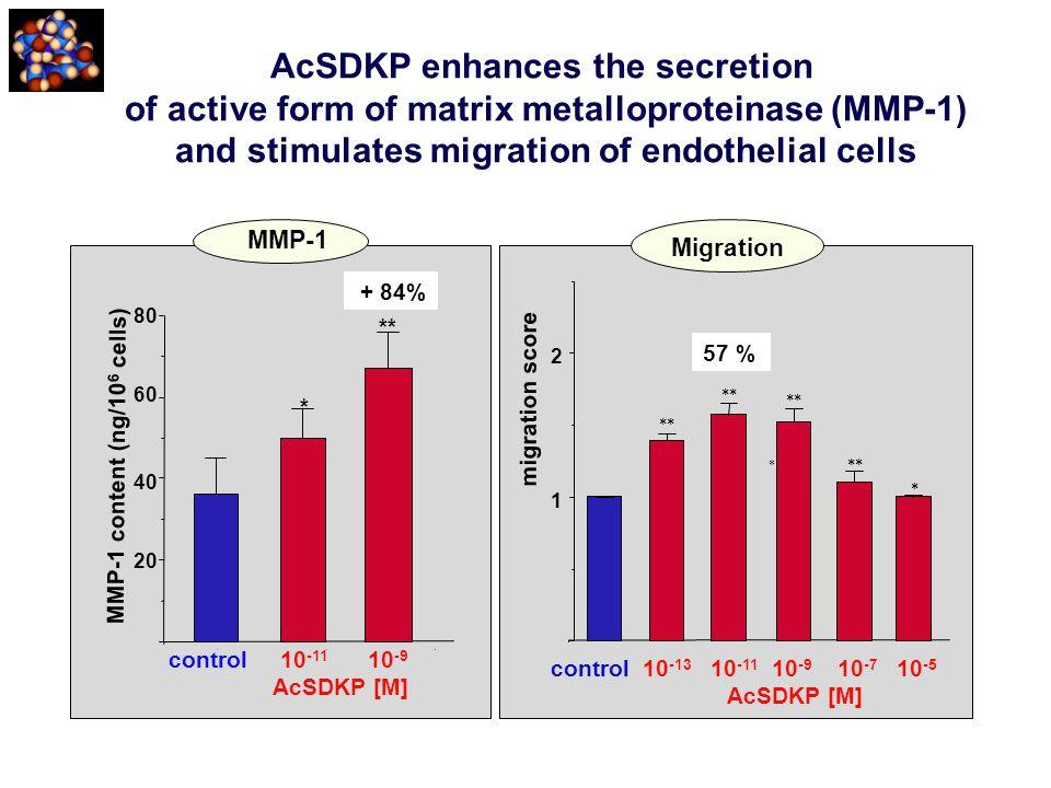 AcSDKP enhances the secretion