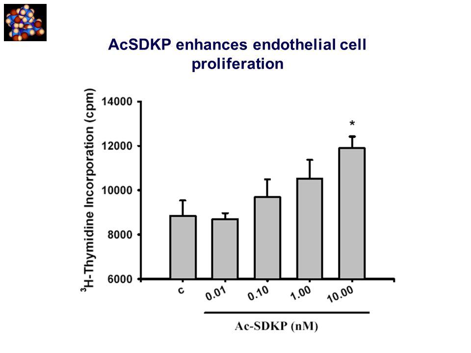 AcSDKP enhances endothelial cell proliferation