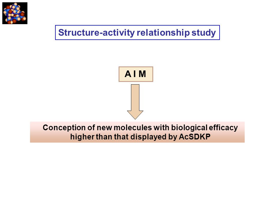 Structure-activity relationship study