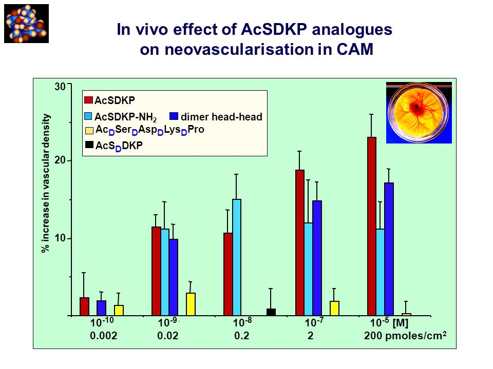 In vivo effect of AcSDKP analogues on neovascularisation in CAM