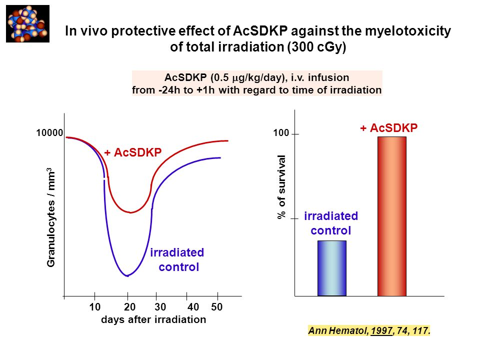 In vivo protective effect of AcSDKP against the myelotoxicity