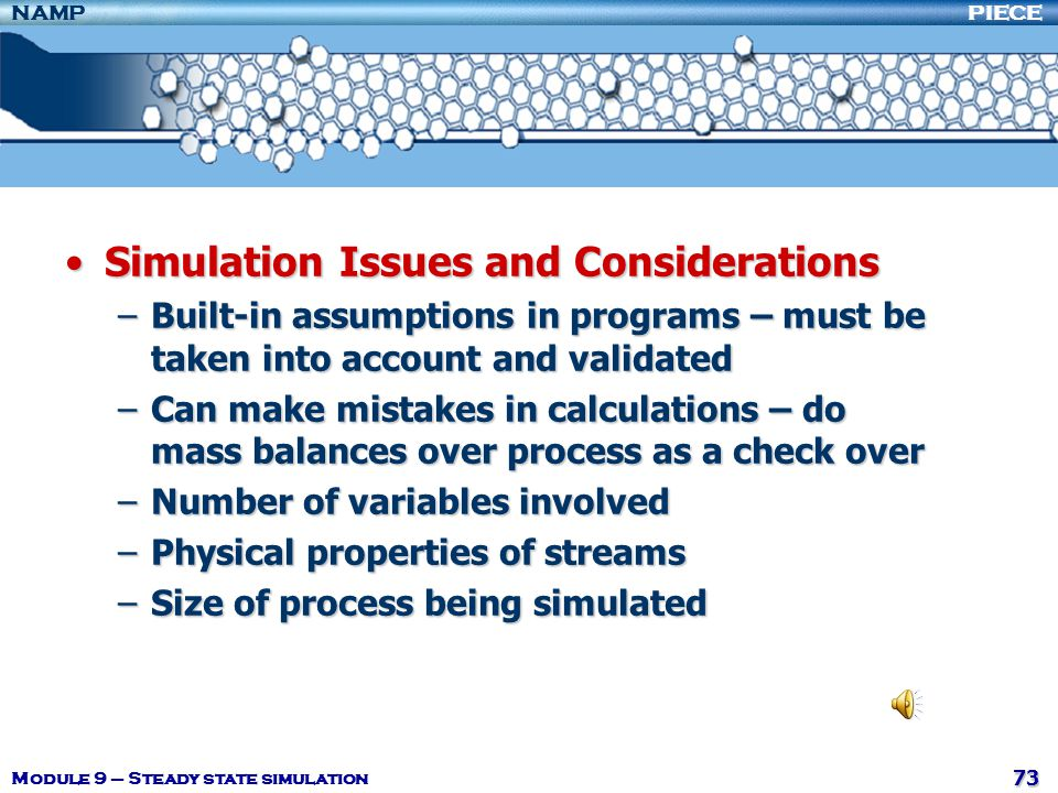 Simulation Issues and Considerations