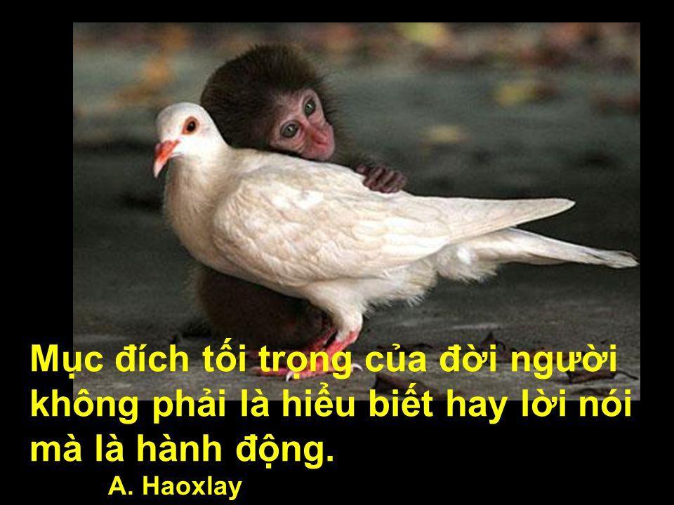 Mục đích tối trọng của đời người không phải là hiểu biết hay lời nói mà là hành động.