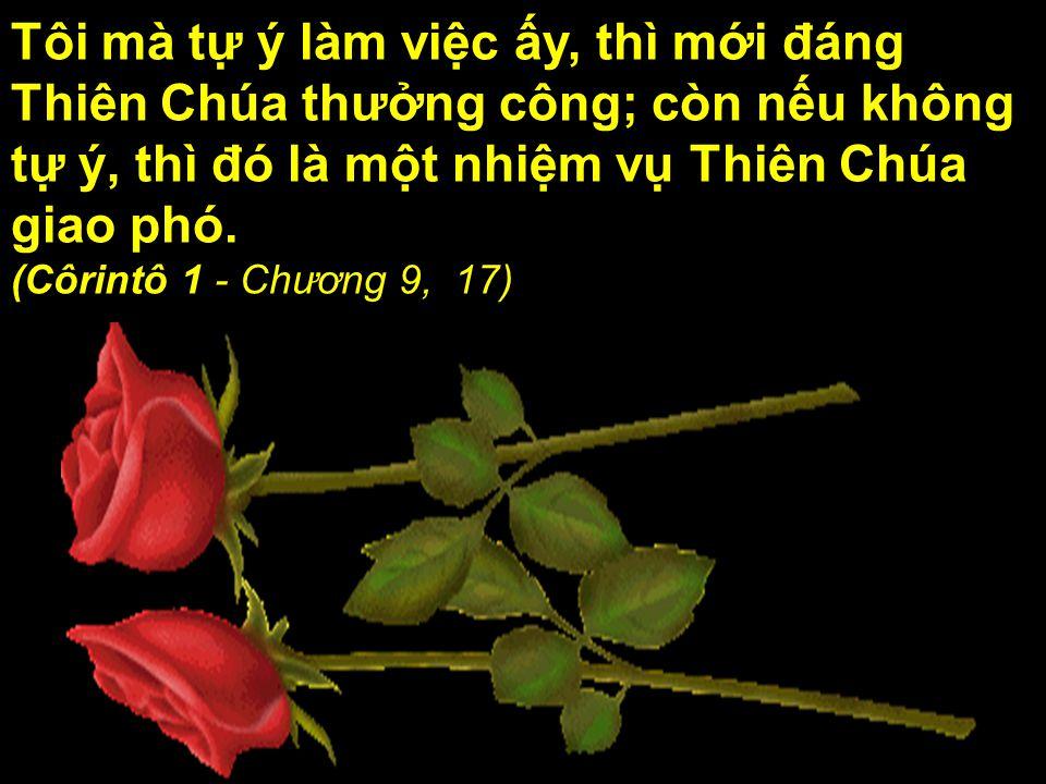 Tôi mà tự ý làm việc ấy, thì mới đáng Thiên Chúa thưởng công; còn nếu không tự ý, thì đó là một nhiệm vụ Thiên Chúa giao phó.