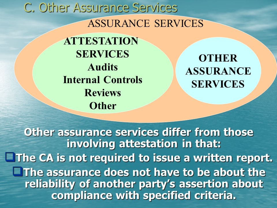 C. Other Assurance Services