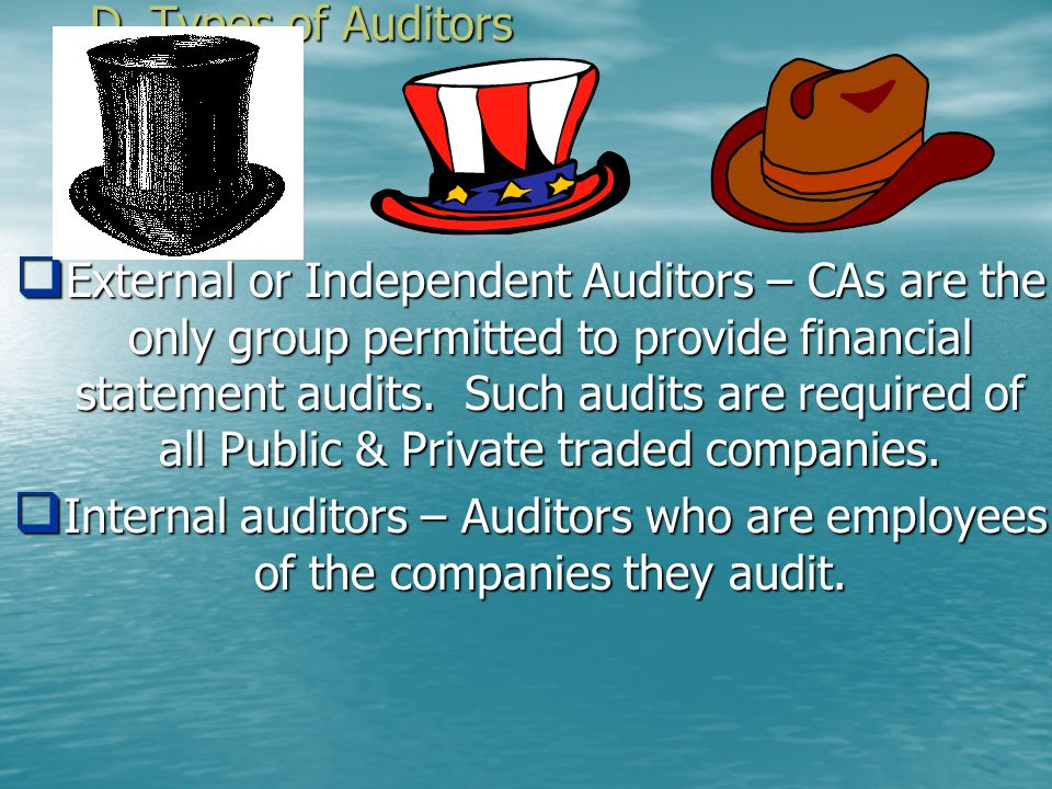 D. Types of Auditors