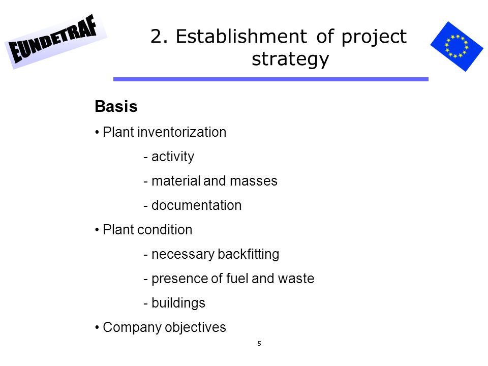 2. Establishment of project strategy