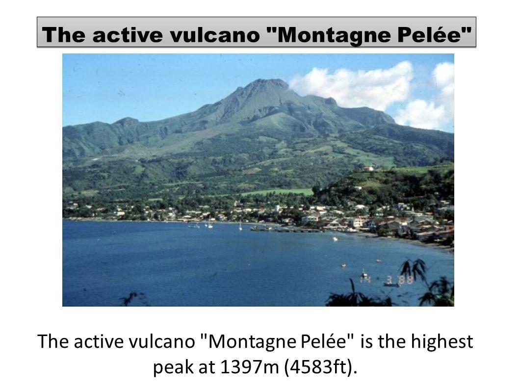 The active vulcano Montagne Pelée