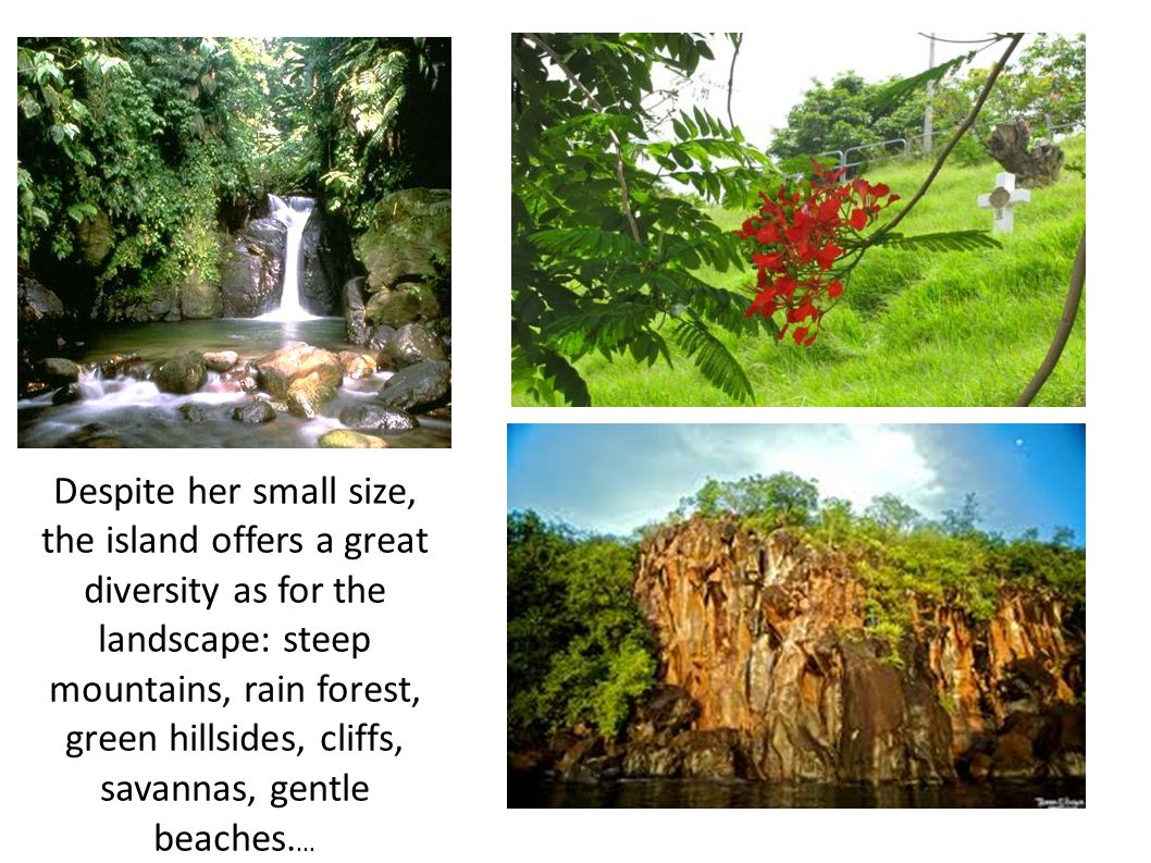 Despite her small size, the island offers a great diversity as for the landscape: steep mountains, rain forest, green hillsides, cliffs, savannas, gentle beaches....
