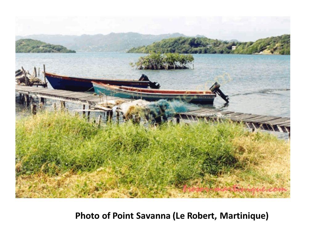 Photo of Point Savanna (Le Robert, Martinique)